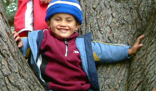 Childrens-ward-Child-smiling-in-tree.jpg
