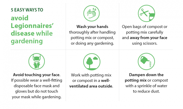 5 steps to avoid Legionnaires' disease while gardening: Wash your hands; Open bags of compost or potting mix carefully  and away from your face using scissors; Avoid touching your face.  If possible wear a well-fitting disposable face mask and gloves but do not touch your mask while gardening; Work with potting mix  or compost in a well-ventilated area outside; and Dampen down the  potting mix or compost with a sprinkle of water  to reduce dust.